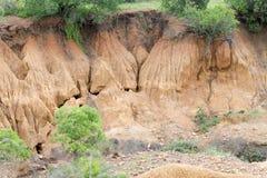 Erosione del suolo Fotografie Stock Libere da Diritti