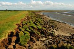 Erosione di litorale, litorale di Solway Fotografie Stock Libere da Diritti