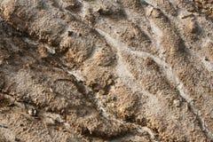 Erosione di terreno Fotografia Stock Libera da Diritti