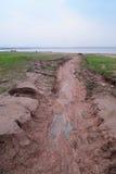 Erosione idrica al suolo Fotografia Stock