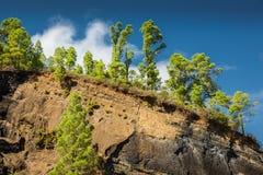 Erosione in Tenerife Fotografia Stock