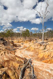 Erosão de solo pelo sobrepastoreio Imagem de Stock