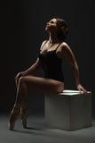 Erotic dance. Sexy ballerina posing in studio Royalty Free Stock Photos