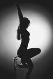 Erotic silhouette Royalty Free Stock Photo