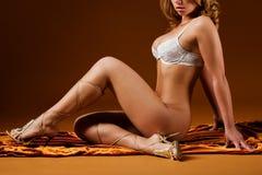 Erotisch Stock Afbeelding