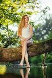 Erotyczna dziewczyna w bieliźnie Zdjęcie Stock
