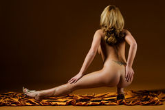 erotyk Fotografia Stock