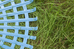 Erpice di plastica sul campo di erba Immagine Stock