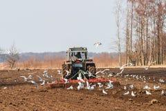Erpici del trattore su un campo alla molla Fotografie Stock