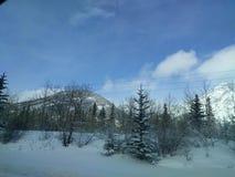 Errant autour de Banff, Alberta, Calgary en hiver photos libres de droits