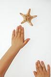 Erreichen für einen Stern Stockbild