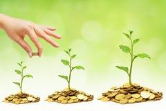 Errichtendes ethisches Geschäft Lizenzfreies Stockfoto