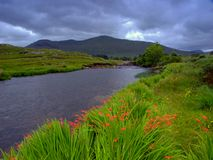 Erriff River Stock Photography