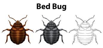 Erro de cama em três esboços ilustração stock