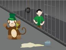 Errore di giorno della st Patrick - bevendo al giardino zoologico Immagini Stock Libere da Diritti