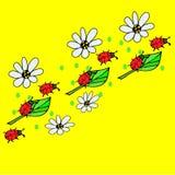 Erros vermelhos em flores Imagens de Stock Royalty Free