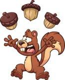 Erschrockenes Eichhörnchen Stockfotos