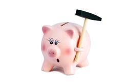 Erschrockenes hübsches Sparschwein mit Hammer, Inflation auf einem weißen Backg Stockfotos