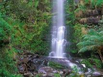 Erskine Falls Royalty Free Stock Image