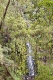 Erskine Falls Photo stock