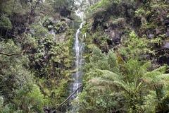 Erskine Falls Photographie stock libre de droits