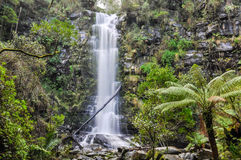 Erskine Falls on the Great Ocean Road, Australia Royalty Free Stock Images