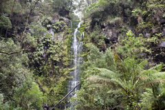 Erskine Falls Royalty Free Stock Photography