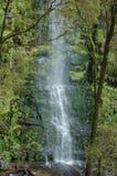 Erskine Falls Victoria, Australien Arkivbild