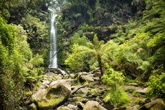 Erskine Falls Waterfall stock fotografie