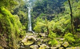 Erskine Falls Waterfall foto de stock royalty free