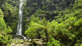 Erskine Falls Waterfall stock video footage