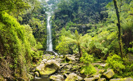 Erskine Falls Waterfall Royalty Free Stock Photo