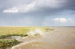 Ersosion van de kust Stock Foto's
