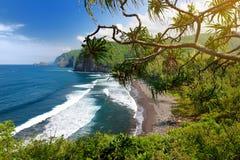 Erstaunliche Ansicht des felsigen Strandes Pololu-Tales, große Insel, Hawaii lizenzfreie stockbilder