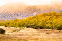 Erstaunliche Ansicht in Herbstsaison; NEUSEELAND, IM APRIL 2017 stockbilder