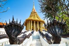 Erstaunliche Ansicht von schönem der Abdruck Lord Buddhas, Sara Lizenzfreies Stockbild