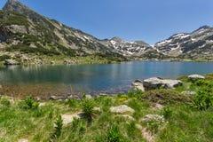 Erstaunliche Ansicht von See Demirkapya-Durchlauf-ADN Popovo und von gelben Blumen in der Front, Pirin-Berg Lizenzfreies Stockbild