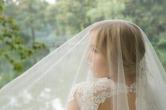Erstaunliche blonde Braut unter einem weißen Spitzen- Hochzeitsschleier Stockfotos