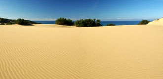 Erstaunliche Dünen am Piscinas Strand stockfoto