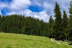Erstaunliche Dolomit-Berge Stockfotos