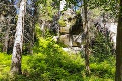 Erstaunliche Felsen und Täler in Teplice, tschechischer Repräsentant Stockfoto