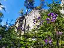 Erstaunliche Felsen und Täler in Teplice, tschechischer Repräsentant Lizenzfreie Stockbilder