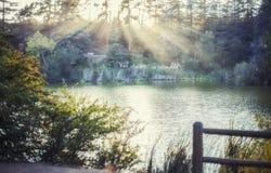 Erstaunliche goldene Sonnenstrahlen bedecken den gefüllten Franklin Canyon See, Los Angeles, Kalifornien lizenzfreie stockbilder