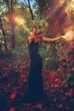Erstaunliche junge Hexe wirft einen Bann im Wald Lizenzfreie Stockfotos
