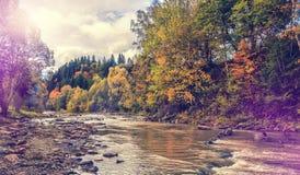 Erstaunliche Landschaft des Herbstes bunte Bäume über dem Gebirgsfluss Lizenzfreie Stockfotografie