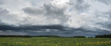erstaunliche Landschaft des schönen meddow unter dem stürmischen Himmel Lizenzfreies Stockbild