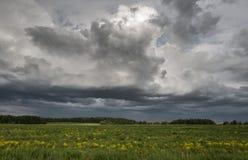 erstaunliche Landschaft des schönen meddow unter dem stürmischen Himmel Stockbilder