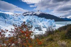Erstaunliche Landschaft mit blauem Eis und Bergen Stockbild