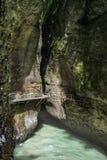Erstaunliche Landschaft von Gebirgsfluss Stockbilder