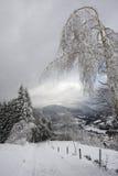 Erstaunliche Landschaft von schneebedeckten Vosges-Bergen, Frankreich Stockfoto